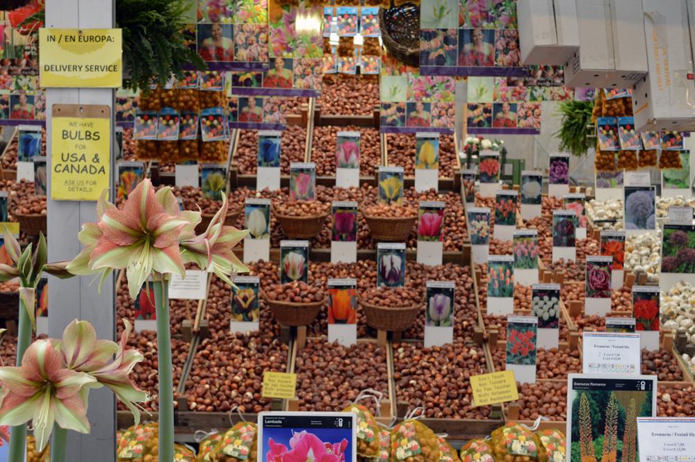 Flower market, Amsterdam - cultivatedrambler.com